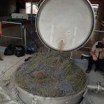 Distillerie de l'huile essentielle de lavande du Quercy