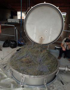Distillerie de l'huile essentielle de lavande